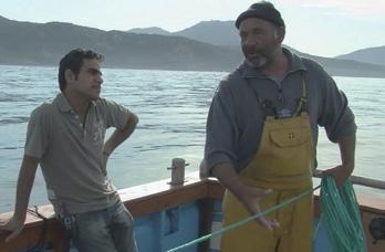 Comp tition de films documentaires for Donne poisson
